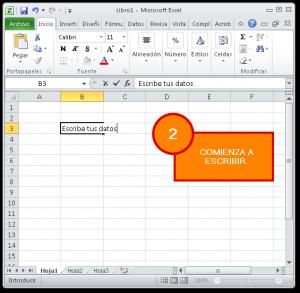 Introducir datos a una hoja de Excel